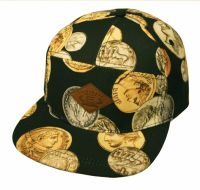 MONEY PRINT FIVE PANEL CAPS CP2115